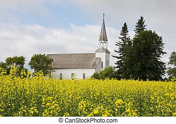 Church in a canola field