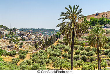 Church of All Nations in the Kidron Valley - Jerusalem