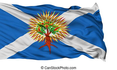 Church of Scotland Religious Isolated Waving Flag - Church...
