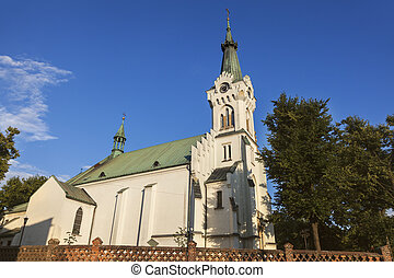 Church of St Jadwiga in Debica
