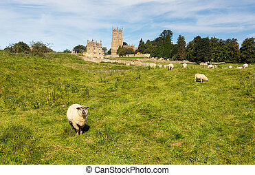Church St James across meadow in Chipping Campden - St James...