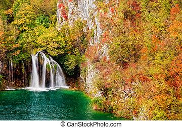 chute eau, dans, forêt automne