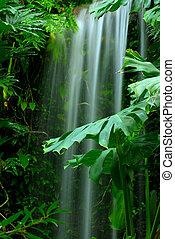 chute eau, dans, les, rainforest