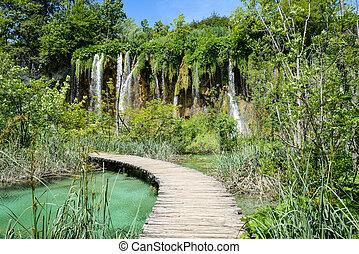 chute eau, et, chemin bois, dans, plitvice, parc national, dans, croatie