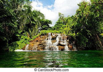 chute eau, forêt, profond