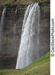 chute eau, islande, méridional, seljalandsfoss