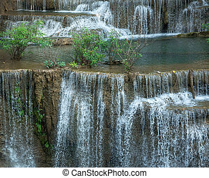chute eau, rainforest.