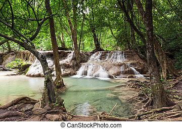 chute eau, rainforest