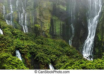 chutes d'eau, île, lagoa, das, abbove, flores, patos, acores;