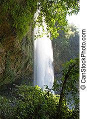 chutes d'eau, chiapas, misol-ha, mexique