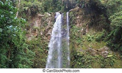 chutes d'eau, forêt, nuage, une