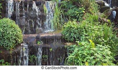 chutes d'eau, petit, exotique, nature, ruisseau
