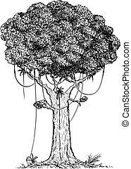 chuva, árvore, ilustração, caricatura, desenho, vetorial,...