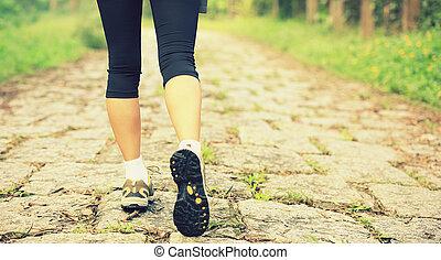 ciągnąć, pieszy, kobieta, las, nogi