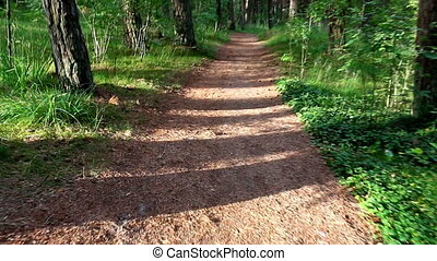 ciągnąć, pieszy, las