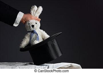 ciągnący, królik, garnitur, poza, kapelusz, człowiek