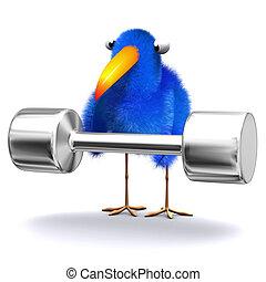 ciężary, niebieski ptak, podnoszenie, 3d