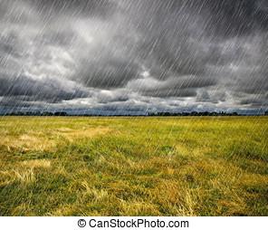 ciężki, na, deszcz, francja, preria, brittany