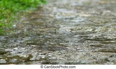 ciężki, wiosna, deszcz