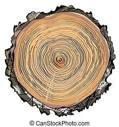 cięty, -, ręka, formułować, drewno, pociągnięty, okrągły