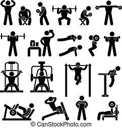 ciało budowa, sala gimnastyczna, gimnazjum