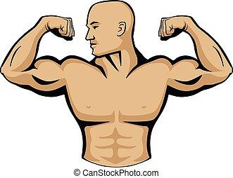 ciało, logo, budowniczy, samiec, ilustracja