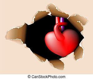 ciało, serce, otwór, mój