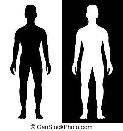 ciało, sylwetka, człowiek