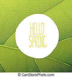 ciao, primavera, testo, su, foglia verde, struttura