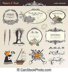 cibo, natura, elementi, vettore, &