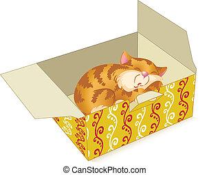 cica, alatt, egy, doboz