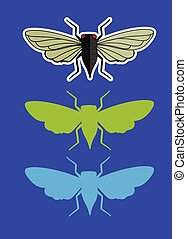Cicada Insects Vector Illustration