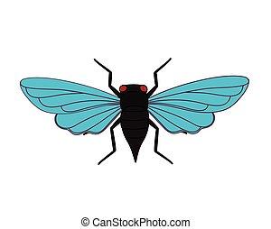 Cicada Moth Vector Illustration
