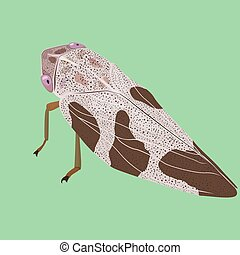 cartoon cicada isolated on light coloured green background