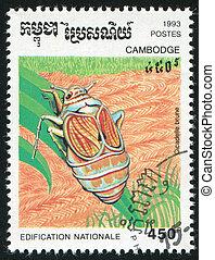 Cicadelle brune - CAMBODIA - CIRCA 1993: stamp printed by...