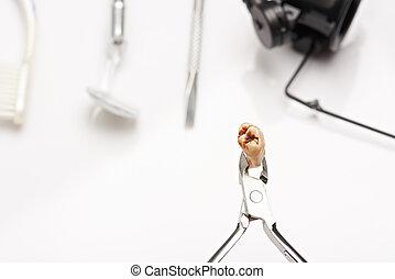 cicatrizarse, de, dientes, con, cavidad