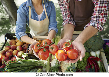 cicatrizarse, de, manos, tenencia, tomates