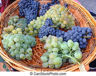cicatrizarse, vista, de, rojo, y, whitw, vino, uva, en, de madera, basket.