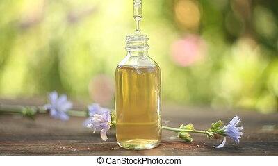 cichorei, essentiële olie, in, mooi, fles, op, tafel