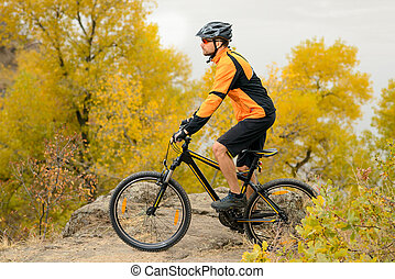 ciclista, bicicleta de equitación, en, el, hermoso, otoño, montaña, rastro