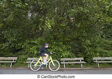 ciclista, canada, park., vancouver., stanley