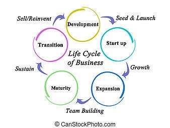 ciclo, fases, vida, negócio, cinco