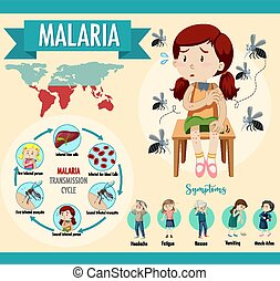 ciclo, malaria, transmisión, información, infographic, ...