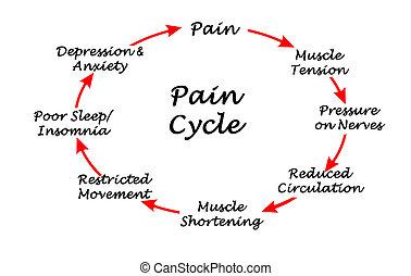 ciclo, pasos, ocho, dolor
