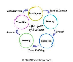 ciclo, passos, vida negócio