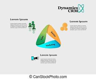 ciclo vital, de, dinámica, crm