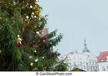 cidade, árvore velha, cima, tallinn, fim, natal