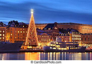 cidade, árvore velha, stockholms, natal