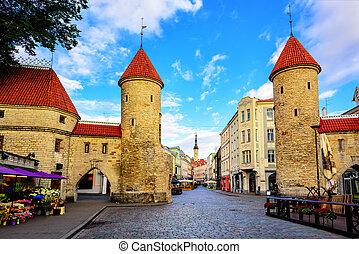 cidade, antigas, estónia, viru, tallinn, portão