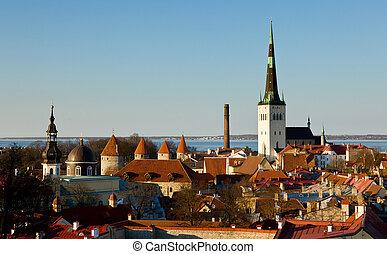 cidade, antigas, tallinn, estónia